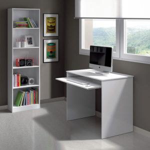 Mesa de ordenador KIDS 5